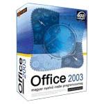 微软Office 2003(中文专业版 授权) 办公软件/微软