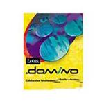 LOTUS Domino (1Domino Server+1Designer+24Notes Client) 办公软件/LOTUS