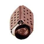 三星SDM-231P 网络摄像机/三星