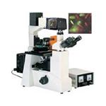 蔡康XDS-500D 显微镜/蔡康