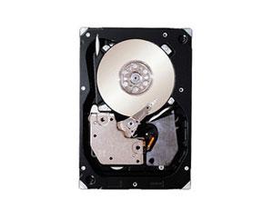 希捷450GB Cheetah 15K.7 SAS(ST3450757SS)图片