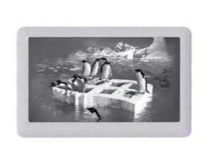 音狐F1(4GB)图片