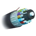 AMP 室外用绝缘型光缆1664199-5 光纤线缆/AMP