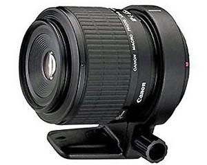 佳能MP-E 65mm f/2.8 1-5X 微距摄影图片