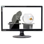 新境界T198 液晶显示器/新境界