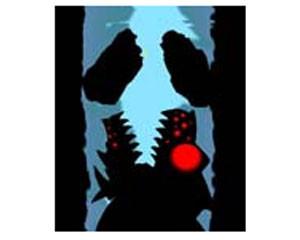 魔窟探险 影窟 shadow cave v1.5 手机游戏 魔窟探险 影窟...