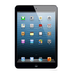 iPad Mini(16GB/Cellular)