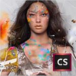 ADOBE Creative Suite 6 Design & Web Premium 图像软件/ADOBE