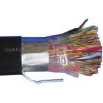 大唐保镖 DT2900-200(200对大对数) 光纤线缆/大唐保镖