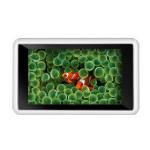 爱国者 月光宝盒 PM5936(8GB) MP4播放器/爱国者