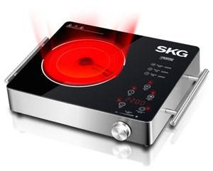 SKG SD-1815