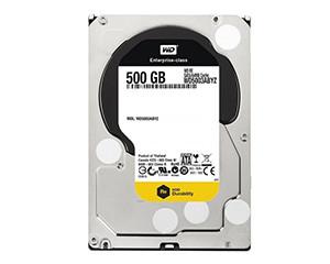 西部数据RE系列 500GB 7200转 64MB(WD5003ABYZ)图片