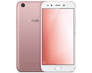 vivo X20(梦幻粉/64GB/全网通)