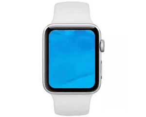 苹果Watch S4