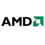 AMD Athlon 300U CPU/AMD