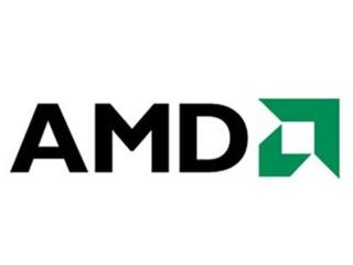 AMD Ryzen 5 5600U图片