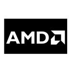 AMD Ryzen 7 4980U CPU/AMD