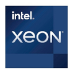 英特尔Xeon W 3365