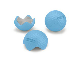 九州风神高尔夫(E-GOLF)蓝色