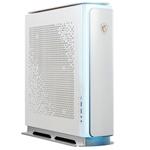 微星P100X(i9 11900K/64GB/1TB+2TB/RTX3080) 台式机/微星